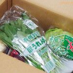美と健康におすすめ!オイシックスの宅配野菜