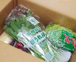 美容と健康におすすめ!オイシックスの安心・安全な新鮮野菜